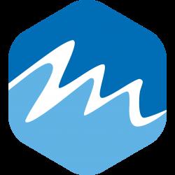MDS Nederland – Een Website Voor Jouw Bedrijf